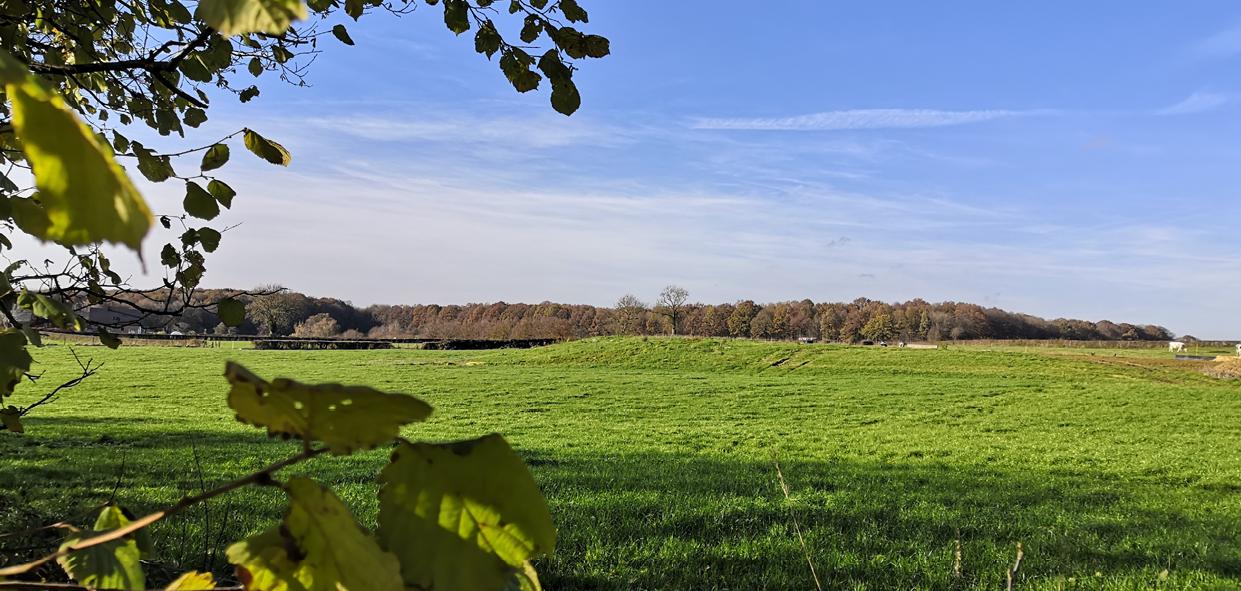 La CAMVS : meilleure intercommunalité de France de la biodiversité
